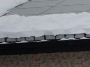 降雪中(拡大)